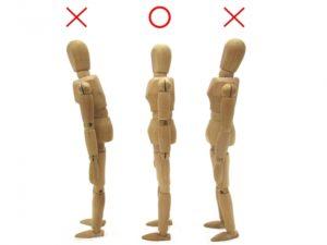 腰痛解消には筋力アップより【筋肉〇〇〇】が重要|守口市 サンテ鍼灸整骨院